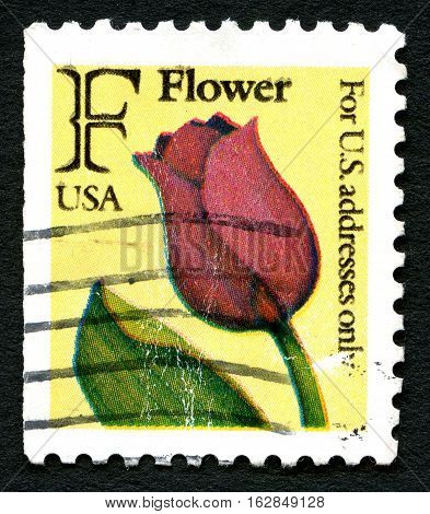 UNITED STATES OF AMERICA - CIRCA 1991: A used postage stamp from the USA with an illustration of a red Tulip circa 1991.