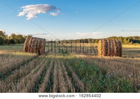 The Straw Is Pressed Into Bales