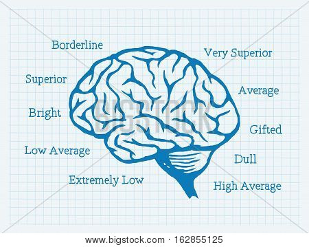 Vector Illustration of Intelligence Quotient. Best for Medical, Human Anatomy, Analysis, Science, Education, Mentality concept.