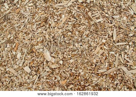 Yellow wooden sawdust  texture as nature background