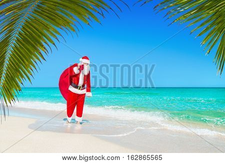 Santa Claus walks barefooted with Christmas sack full of gifts at sandy ocean beach with palm leaves. Happy New Year travel destinations for tropical vacations discounts concept.
