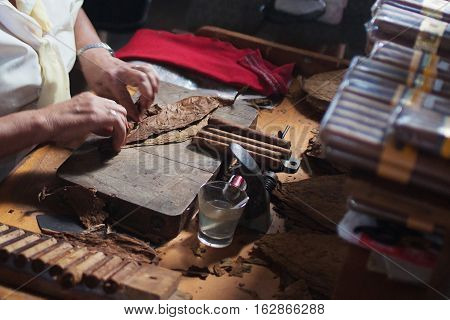 An elderly woman works on traditional manufacture of cigars at the cuban tobacco factory, Cuba
