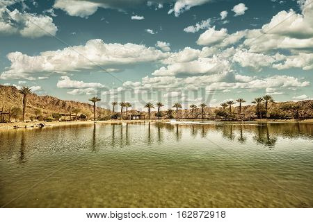 The Timna Oasis Lake in Timna park Israel (HDR image with black gold filter)