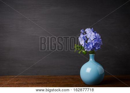 Blue Plumbago Flowers In Vase