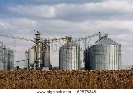 Towers of grain drying enterprise. Agricultural enterprise.