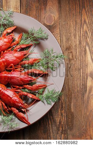 boiled crawfish on wooden surface dill. old style plate