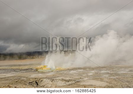 Spasm Geyser reaching for the clouds while the wind blows the steam away to show the beautiful colors of Yellowstone