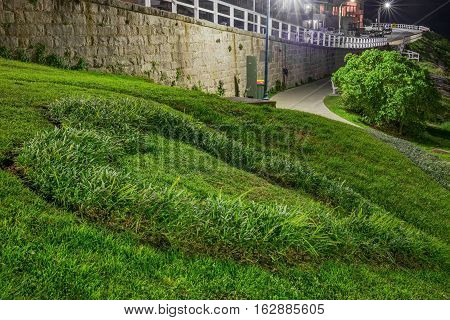 Sydney, Australia - May 28, 2016: Heart shape grass pattern on grass verge at Bronte Beach. High resolution, long exposure image. Above this pathway is Bronte Marine Drive.