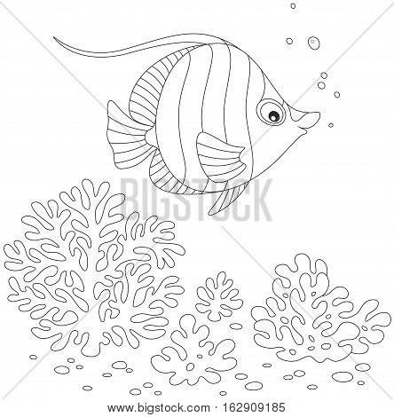 Black and white vector illustration of striped butterfly fish swimming over corals in a tropical sea