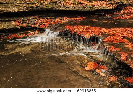 A creek in autumn with colorful leaves and a water cascade.