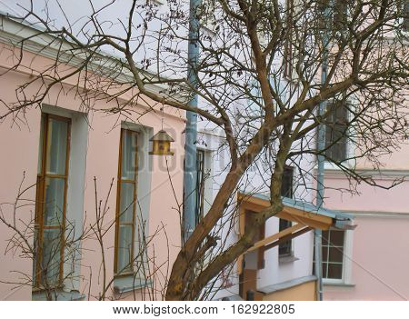 A bird house on the tree on house background.