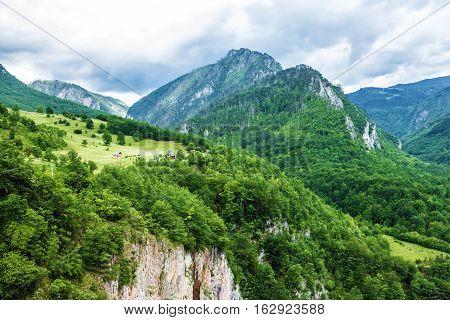 Mountain natural landscape, Montenegro green hills view.