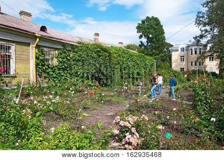 SAINT-PETERSBURG, RUSSIA, AUGUST 3, 2016: People look at the different sorts of roses in the rosarium in Peter the Great Botanical Garden (Botanic Gardens of the Komarov Botanical Institute)