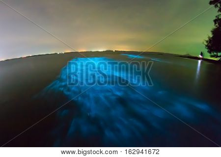 Bioluminescent plankton. Glowing wave taken with long exposure.