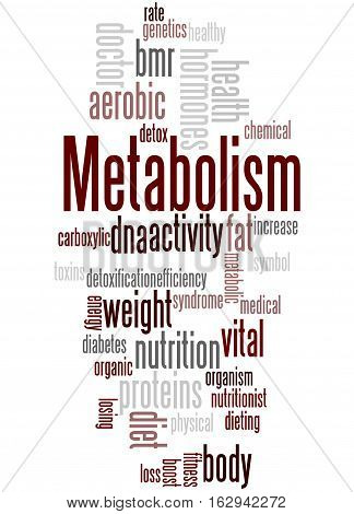 Metabolism, Word Cloud Concept 3