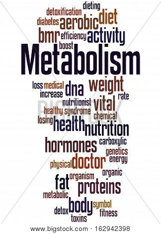 Metabolism, Word Cloud Concept 6
