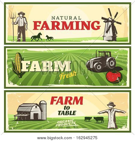 Three horizontal banners set with natural fresh farm concepts stylized ranch minimalistic landscape with editable text vector illustration