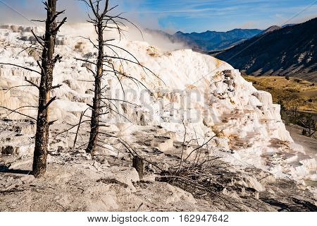 Terraced limestone deposits of Mammoth Hot Springs Yellowstone National Park