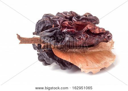 spoiled walnut isolated on a white background closeup.