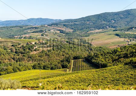 Landscape in Chianti region the heart of the Tuscan Countryside