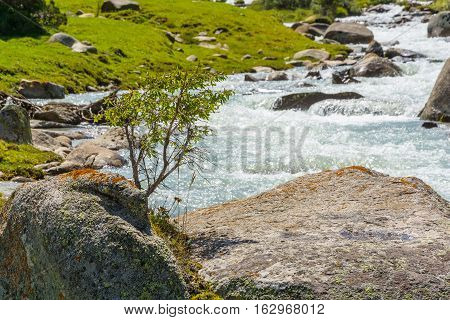 Snippet turbulent mountain river with a huge stone in a Sunny summer day.
