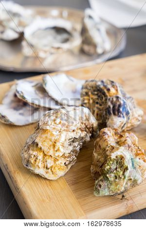 Raw oysters closed shells on wooden board