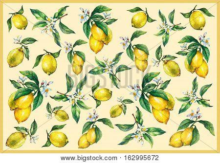 aquarelle, art, background, branch, citric, citrus, craft, decorating, decoupage, design, draw, flower, food, frame, fresh, freshness, fruit, green, hand, herbal, illustration, ingredient , isolate, isolated, juicy, leaf, lemon, lemonade, lemons, lime, li