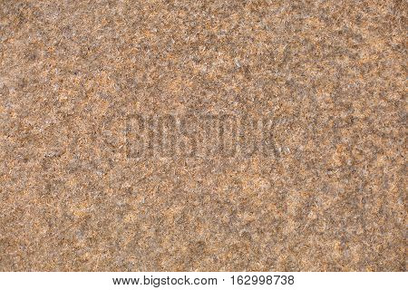 Heap of wooden sawdust backgrounds, close up