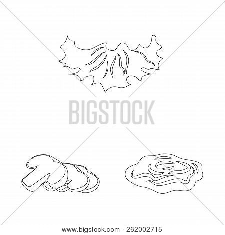 Vector Illustration Of Burger And Sandwich Logo. Set Of Burger And Slice Vector Icon For Stock.