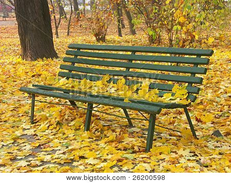 Park bench 1115_08