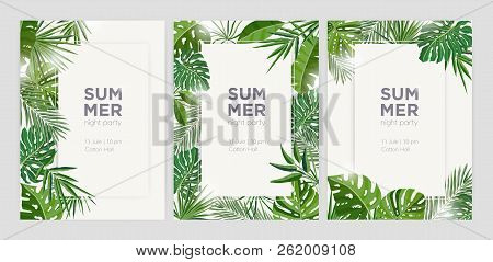 Collection Of Vertical Summer Backgrounds With Frames Or Borders Made Of Green Tropical Palm Leaves