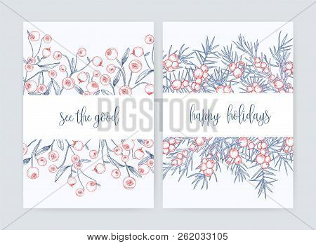 Bundle Of Flyer Or Postcard Templates With Forest Cranberries And Juniper Branches With Berries Hand