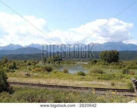 Columbia River Marsh