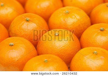 Fondo de mandarina