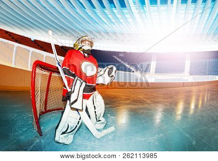 Young Boy Goaltender With Hockey Stick On The Rink