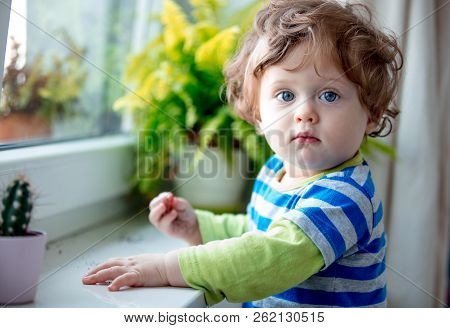Little boy discover a work. Stay near window sill and plant at home poster