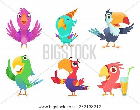 Cartoon Parrots Characters. Cute Feathered Birds With Colored Wings Funny Exotic Parrot Various Acti
