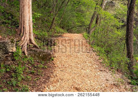 Pebble Trail In Green Forest Along Side Water Hiking Trail In The Woods And Park