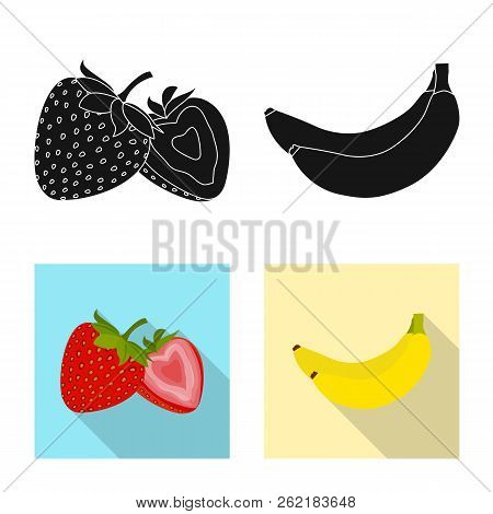Vector Design Of Vegetable And Fruit Icon. Set Of Vegetable And Vegetarian Stock Vector Illustration