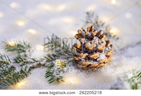 Branch Of A Conifer With Snow Landscape And Many Lights