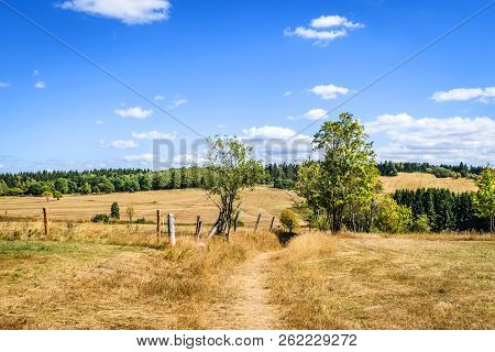 Countryside Landscape With Dry Fields And Green Trees In The Summer