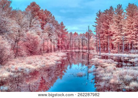 Vibrant Seasonal Infrared Autumn Colors And Water Near Cumberland, Wisconsin, Usa.