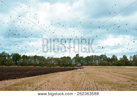 Agricultural Field, Arable Land. Tractor Plowing The Ground. Farmer Working In Field. Cultivation Of