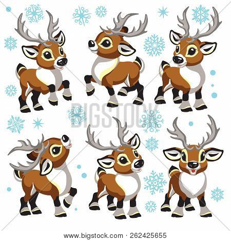 Reindeer Vector Set. Cartoon Collection Of Funny Christmas Tiny Caribou Deer In Different Poses . Is