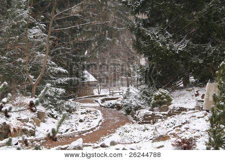 Winding path through the new fallen snow