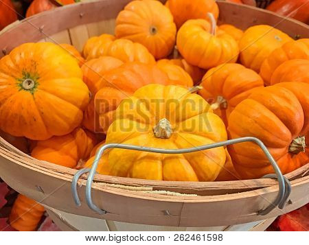Wooden Basket Crate Filled With Orange Pumpkins