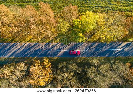 Vacation Background. Autumn Background. Red Car On Road From Above. Red Car Moving On Autumn Road In