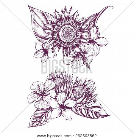 Hand Drawn Illustration Of Flowers And Leaves. Highly Detailed Vector Sketch