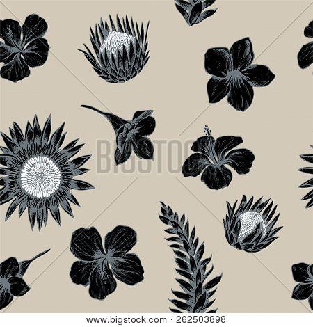 Vector Seamless Pattern Of Allamanda And Vriesea. Hand Drawn Vector Illustration