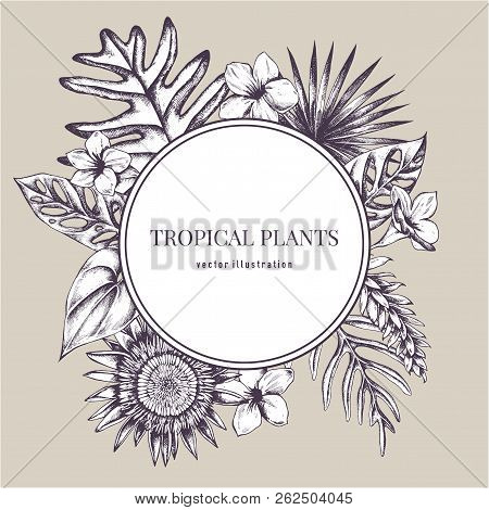 Round Paper Emblem Over Tropical Plants. Hand Drawn Vector Illustration